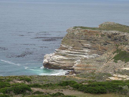 开普角自然保护区照片