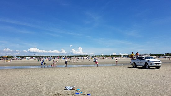 West Wittering Beach: 20180603_122345_large.jpg