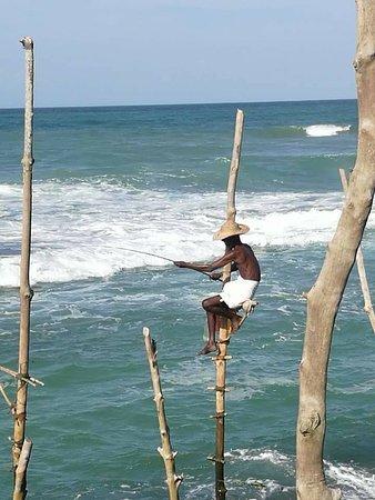 Sri Lanka Private Driver: Stick fisherman - shiyanfazool@gmail.com