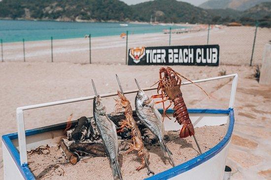 Tiger Beach Club照片