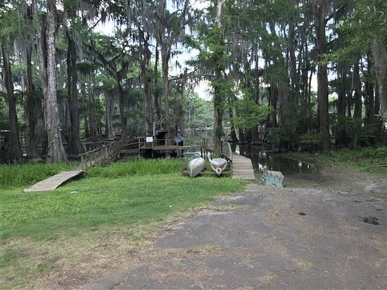 Uncertain, TX: At the end of the lane from the cabin...kayaks and canoes available for use or just sit and enjo