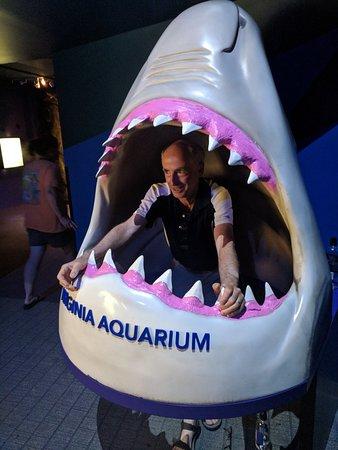 Virginia Aquarium & Marine Science Center: IMG_20180601_105551_large.jpg
