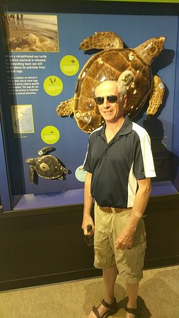 Virginia Aquarium & Marine Science Center: IMG_20180601_104801727_large.jpg