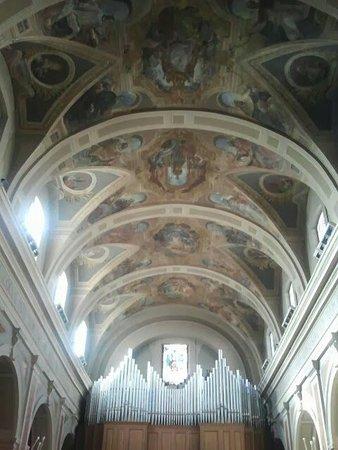 Cattedrale di San Gerardo: Interno cattedrale con vista organo
