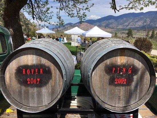 See Ya Later Ranch: Double Barrel