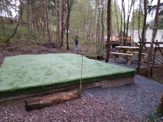 Celtic Woodland Holidays ภาพ
