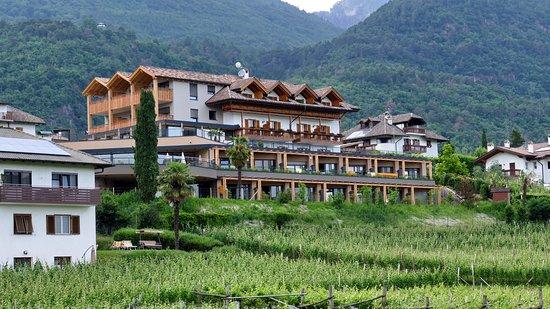 Hotel Torgglhof : Blick von der Terrasse