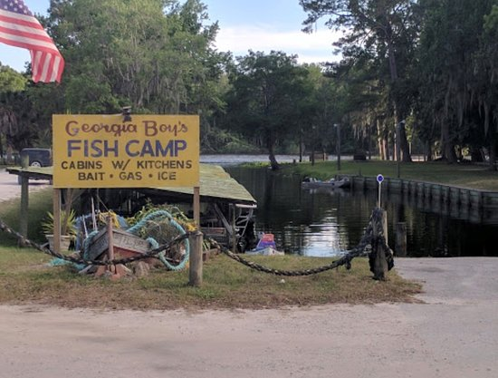 Georgia Boys Fish Camp Satsuma Fl Lodge Reviews