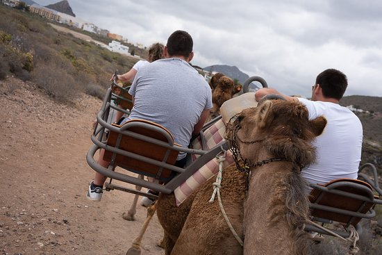 Camel Park: The side seats took a bit from the experience