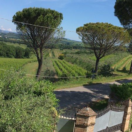 Torgiano, Italy: photo0.jpg