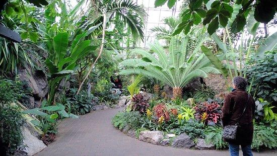 Muttart Conservatory : Tropical Pavilion