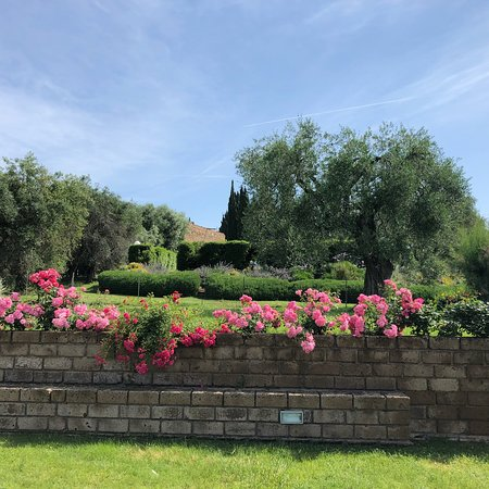 Istia d'Ombrone, Italy: photo1.jpg