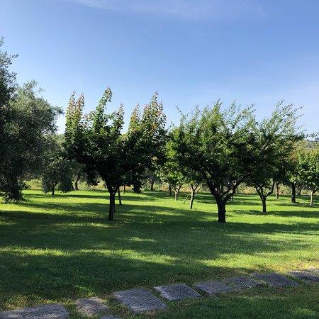 Istia d'Ombrone, Italia: photo2.jpg