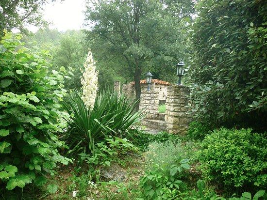 Saint-Martin-de-Castillon, ฝรั่งเศส: Jardin