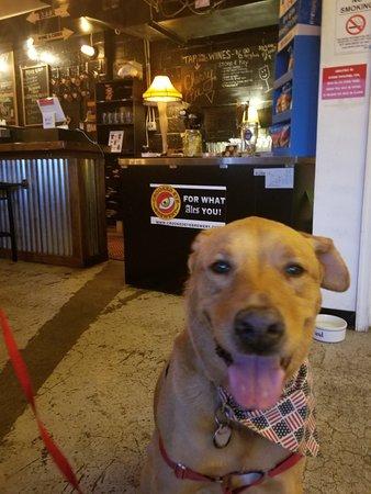 Hatboro, بنسيلفانيا: Ziggy loved Crooked Eye