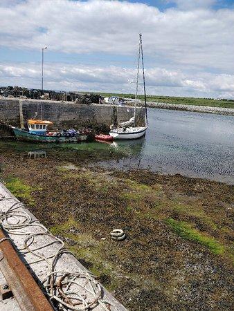 New Quay, İrlanda: IMG_20180603_143410_large.jpg