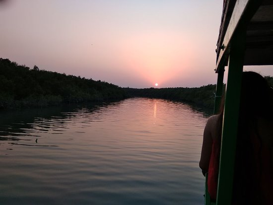 Sundarban Jungle Life