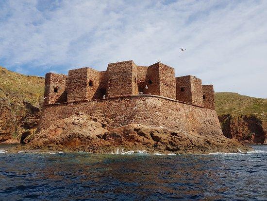 Berlenga Grande, โปรตุเกส: fortín de la isla