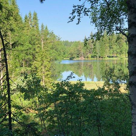 Foto Oslomarka