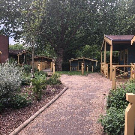 Bilde fra ZSL London Zoo Lodges