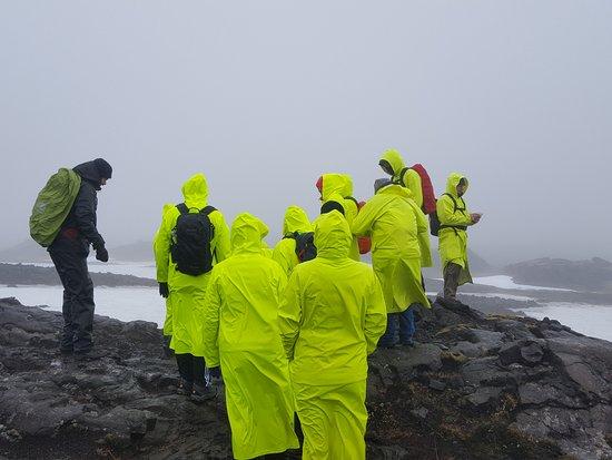 Inside The Volcano: ducks in a row