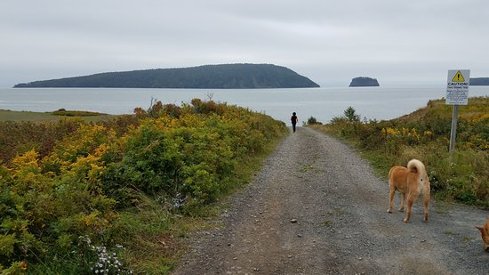 Five Islands, Kanada: I believe this island, the largest of the 5, is called Moose Island.