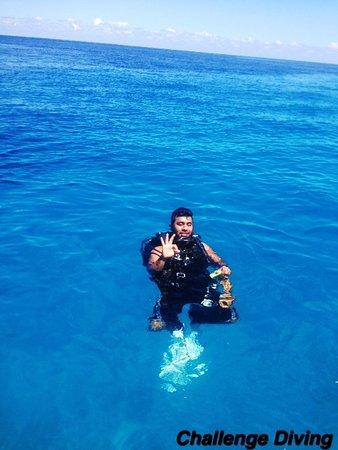 写真Challenge Diving枚
