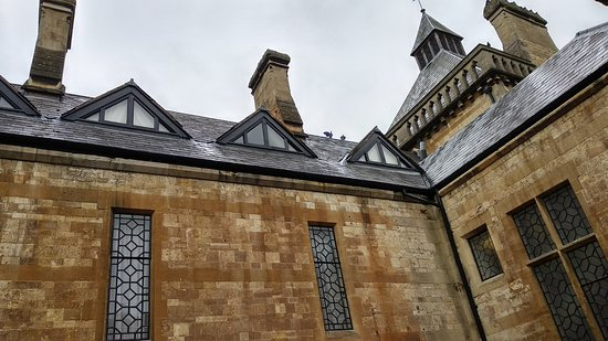 Mercure Warwickshire Walton Hall Hotel and Spa: View of roof space room with noisy birds.