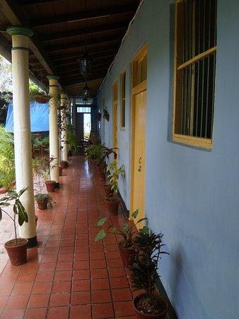 Hostal Buen Viaje: The veranda