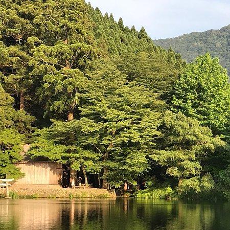 Yufuin Area: photo4.jpg