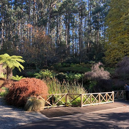 National Rhododendron Gardens: photo0.jpg