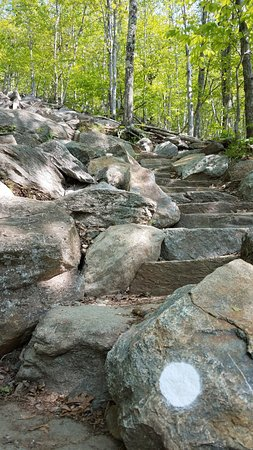 Jaffrey, NH: White Trail Trail
