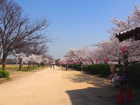 สวนปราสาทโอซาก้า: Botanical Gardens