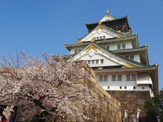 สวนปราสาทโอซาก้า: Cherry Blossom & Main Castle