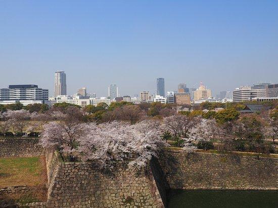 สวนปราสาทโอซาก้า: View of Osaka City