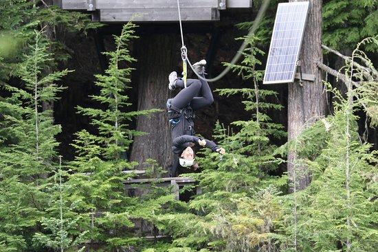 惠斯勒的Zipline冒险照片