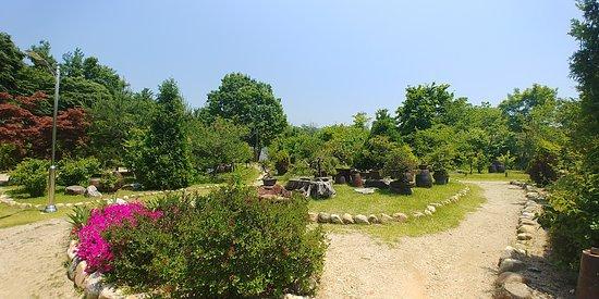Angela Garden