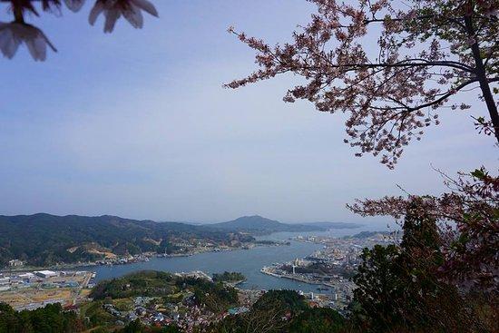 Mt. Amba: View of Kesennuma Port from Mt Amba