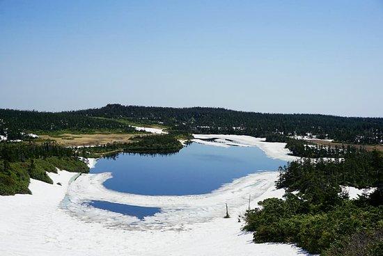 Hachiman Swamp