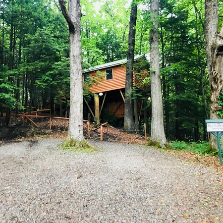 Cabins at Pine Haven : photo0.jpg