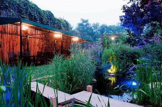 Peafowl Garden: 户外环境