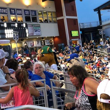 Blue Wahoos Ballpark张图片