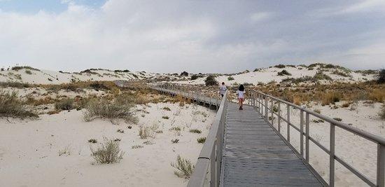 White Sands National Monument Photo
