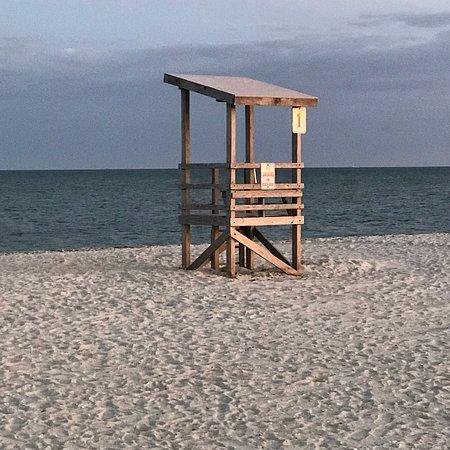 Seagull Beach: photo2.jpg