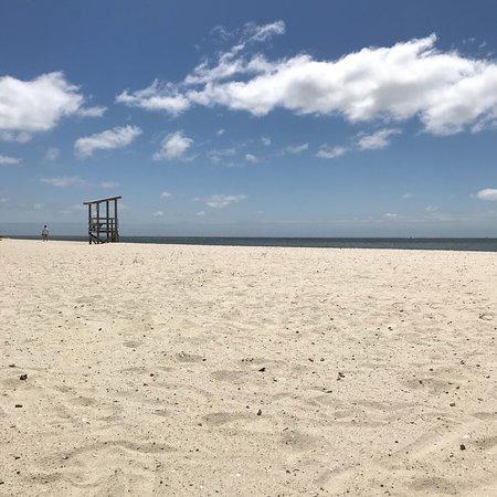 Seagull Beach: photo3.jpg