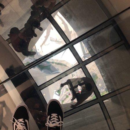 Ảnh về CN Tower