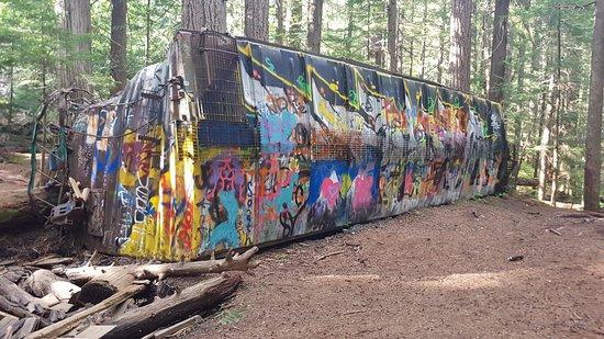 The Whistler Train Wreck Trail照片