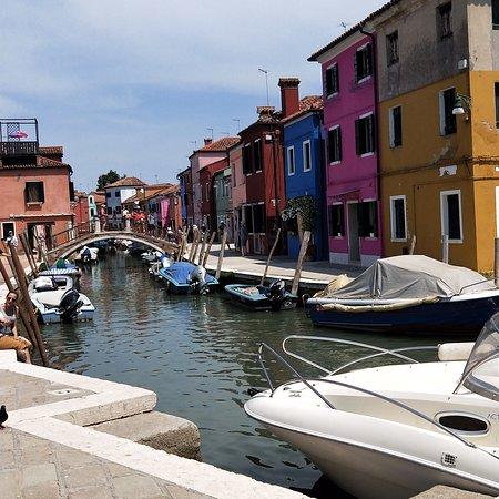 Murano, Burano & Torcello Half-Day Sightseeing Tour照片