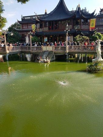 Shanghai Tourist International Service Center (Yuyuan): Shanghai Yu Garden (Yu Yuan)