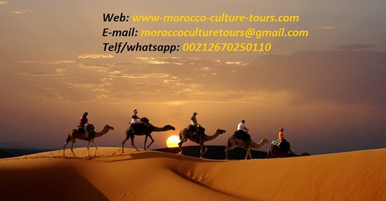 Morocco Culture Tours